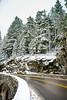 Winter and Snow Scenery at Mount Rainier National Park, Paradise, Ashford, Washington, United States.