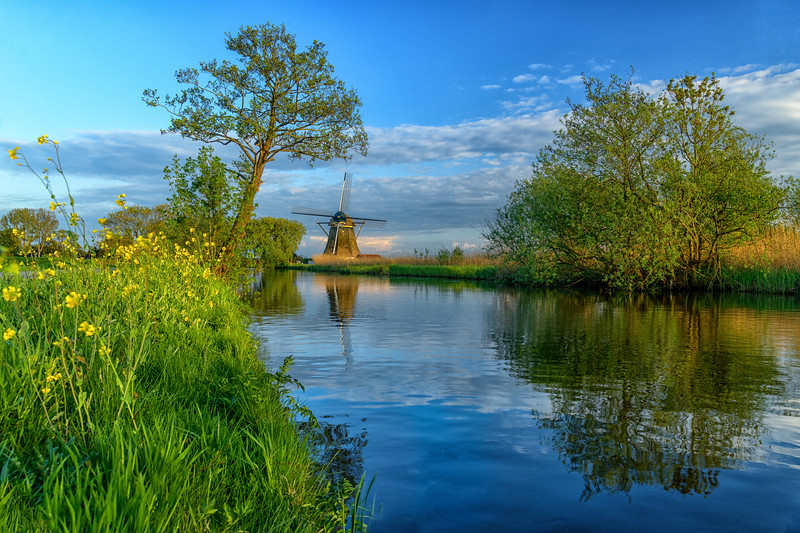 HOLLAND - WINDMILLS-0220.jpg