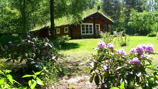 Forår/sommer 2012
