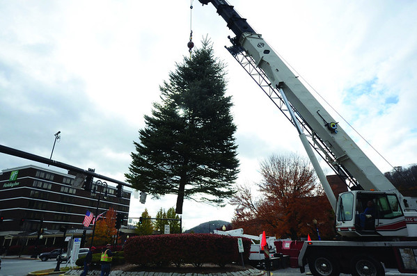 Holiday trees put up in downtown North Adams-110613