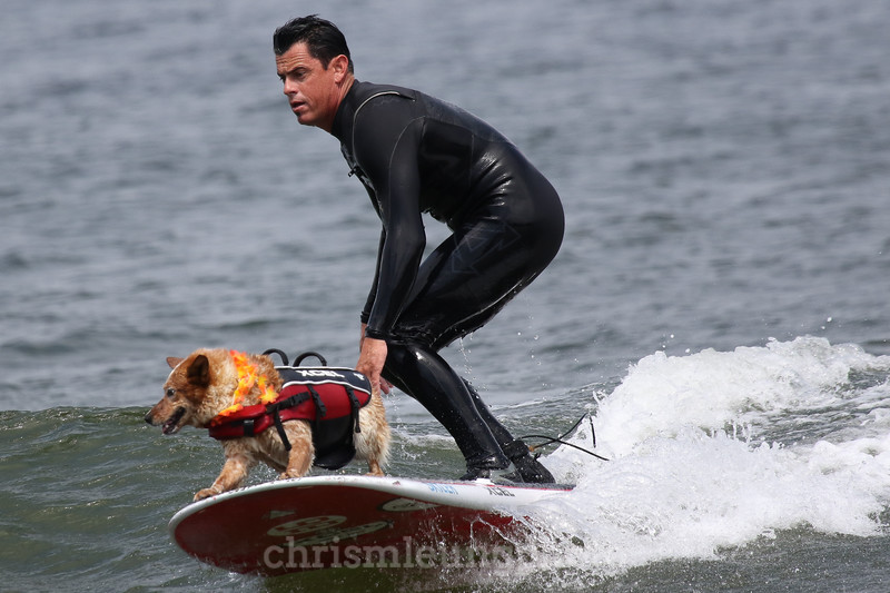8/5/17: Skyler the Surf Dog and her human, Homer Henard ,at the 2017 World Dog Surfing Championships at Pacifica State Beach in Pacifica, Ca by Chris M. Leung