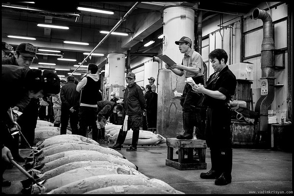 Auctioning Tuna at the Tsukiji Fish Market, Tokyo,2014