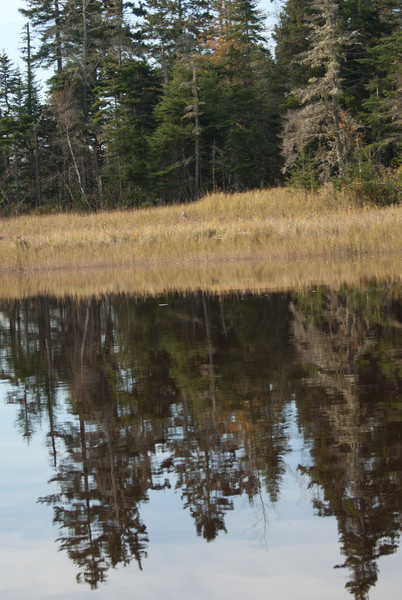 Maine Vacation-03084.jpg