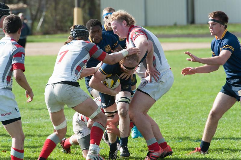 2015 Michigan Rugby vs. Ohio State -297.jpg