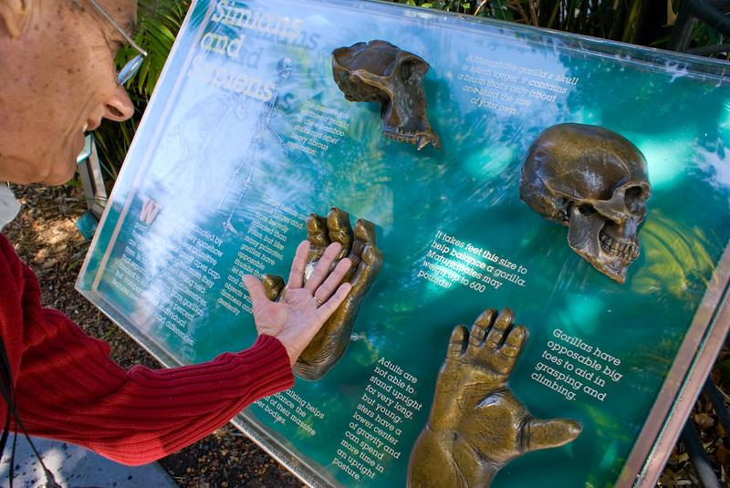 Big hands San Diego Zoo, San Diego, CA - March 2007