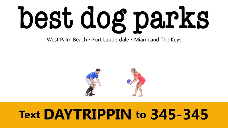 _DAY TRIPPIN - NEW COMMERCIAL 2 best dog parks GIF.mp4