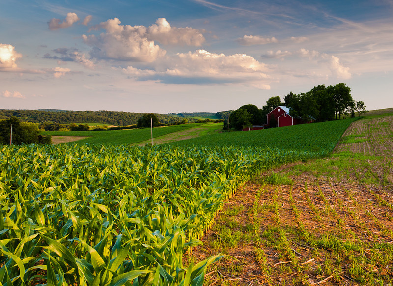 Farmland, York County, Pennsylvania