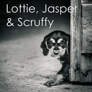 Lottie, Jasper & Scruffy