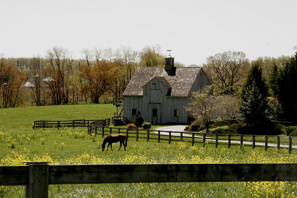 upland barn.jpg