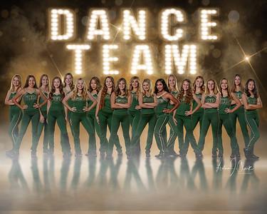 LHS DANCE TEAM 2019-20