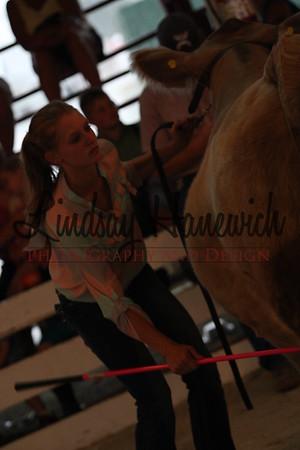 Ringshots - Beef Showmanship
