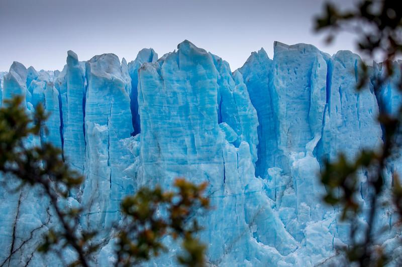 Moreno Glacier Detail-3.jpg