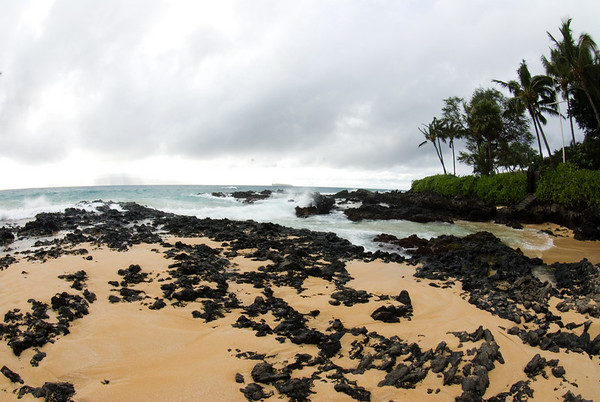Maui Hawaii Wedding Photography for Wotton 12.04.07 All