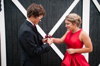 Blake & Madison {Prom}