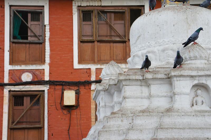 nepal 2011 (349 of 382).jpg