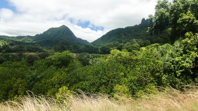 Hawaii- North Shore 2017-8060049.jpg