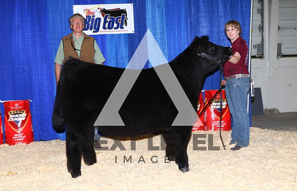 Big East 2013 Youth Steer Show Backdrop