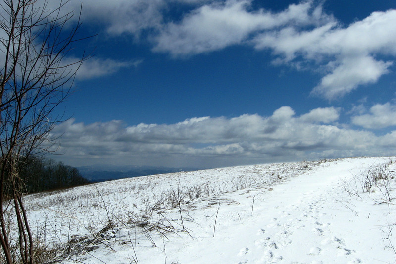 Within a half mile the trail breaks free of the woods atop the main summit ridge...