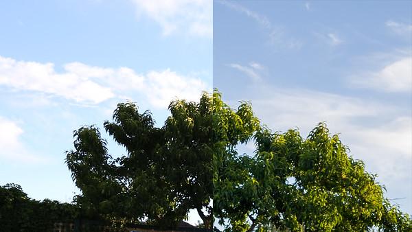 videoRAWtest20141102
