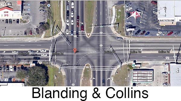 Blanding_collins_600.jpg