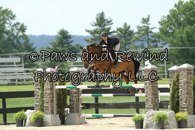 Ring I Wednesday: 7/8yr Old USEF Young Jumper 1.30m