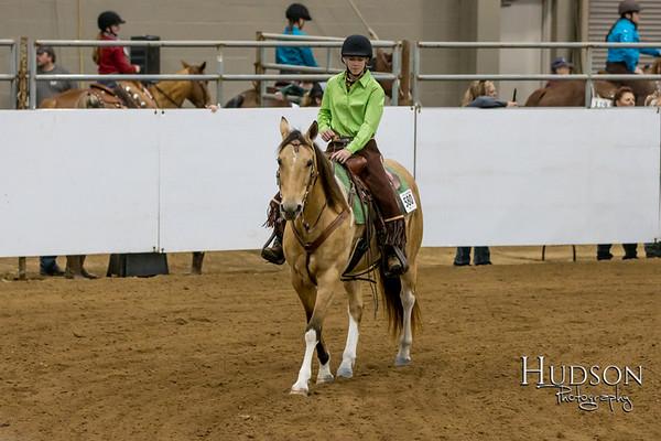 22 Ranch Horse Pleasure
