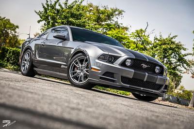 Quicksnap Hillbank Mustang 5.0