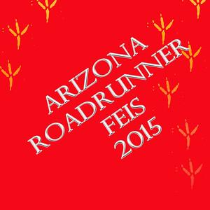Arizona RoadRunner Feis
