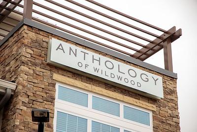 2020-0130 Anthology