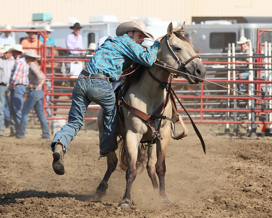 2015 Sioux Empire 4-H Rodeo - Sun Roping & Goats