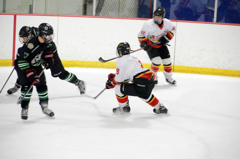 140111 Flames Hockey-240.JPG