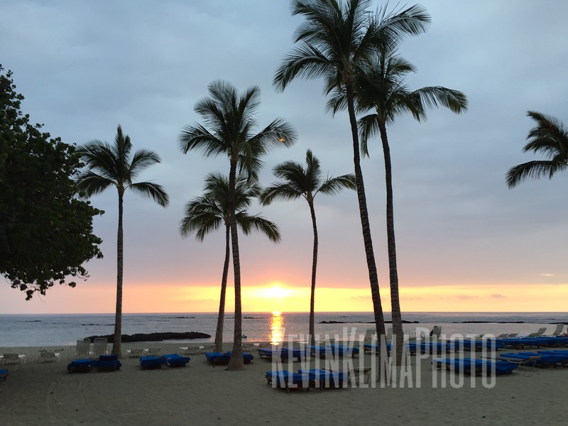 HawaiiPhonePics-65.JPG