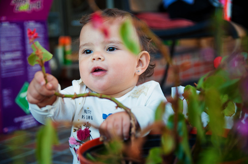 Cuda with plant.jpg