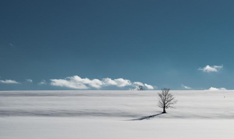Winter scenes-7.jpg