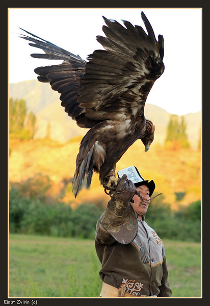 2016-07-20_1815 Eagle Hunter.jpg