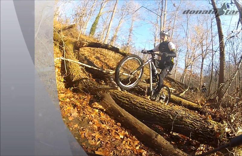 log ride 2.jpg