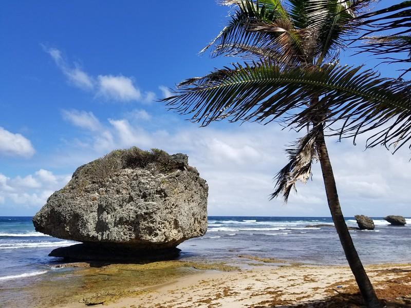 Barbados (34).jpg