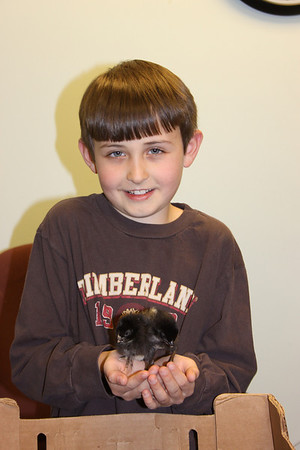 4-H Chick Chain - 2011