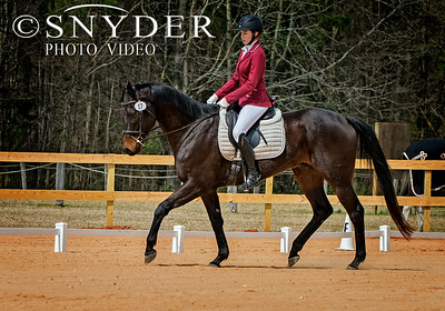 Britches & Bridles Dressage Series