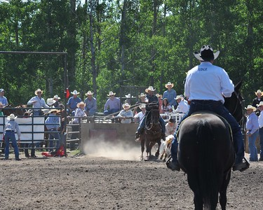 Calf Roping (Section 3)