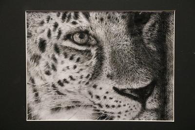 US 9th Animal Drawings 12-17-20