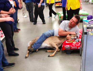 unsuspecting-walmart-customer-takes-down-startled-deer