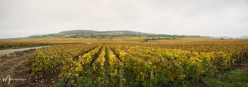 2019-10 - Burgundy Vacation-2743_pano_edit.jpg