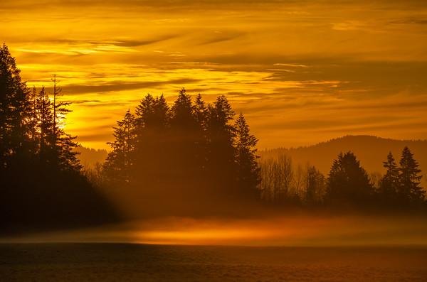 3.1.21 Sunrise