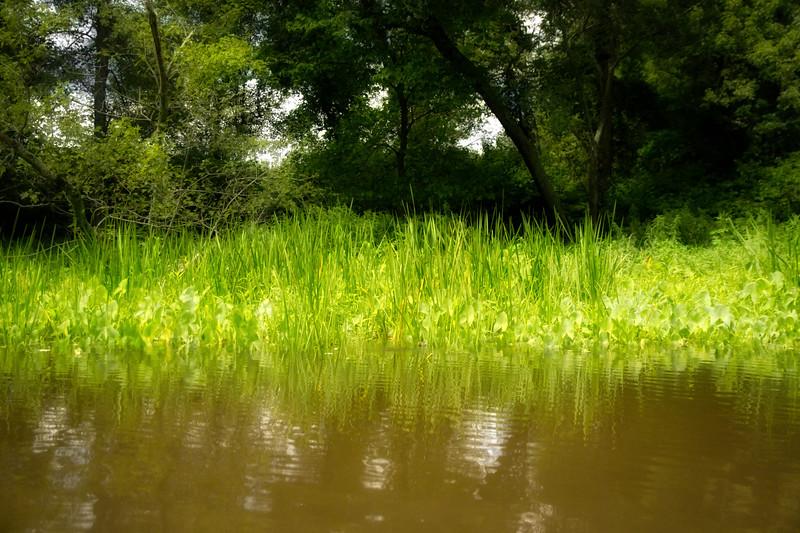 Kayaking Wallkill River Upstream (134 of 147).jpg