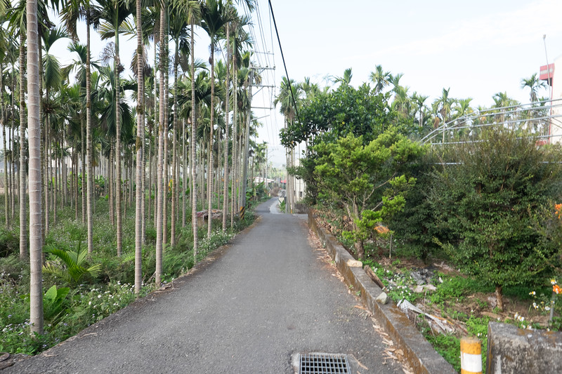 2019-12-31 Taiwan-54.jpg