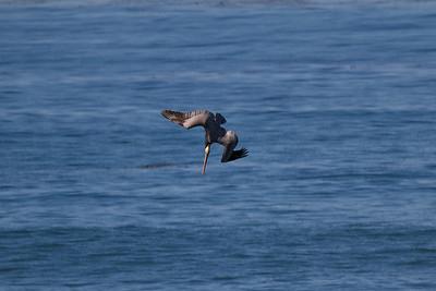 San Diego March 2012