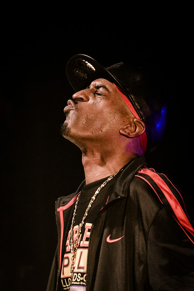Rakim / La Villette, Paris, 2011
