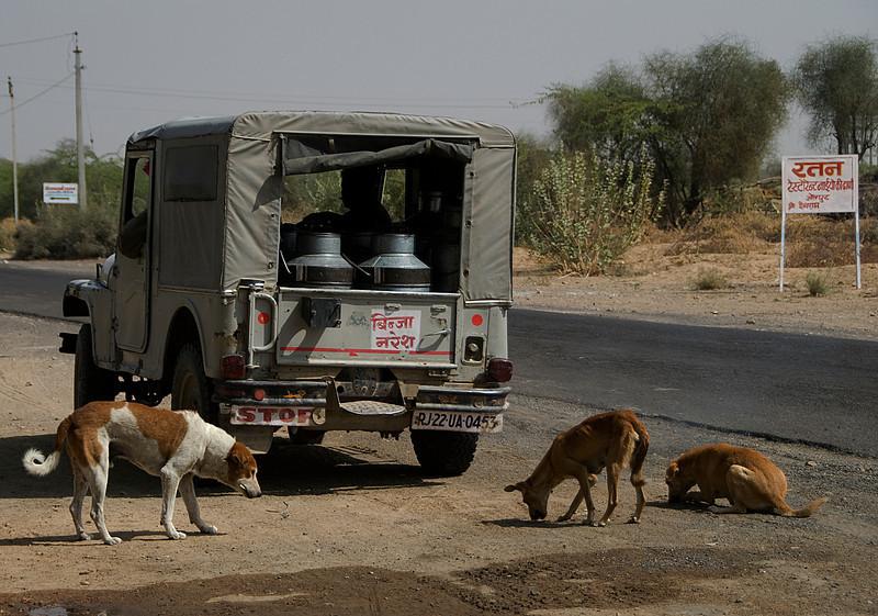 India-2010-0212A-146A.jpg
