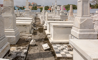 Berg Altena Jewish Cemetery (Text: Rabino Aaron Peller. Photos: Michèle van Veldhoven)
